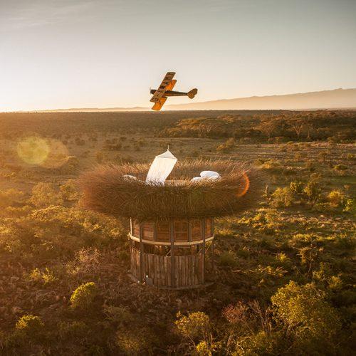 Kenya Bird's nest