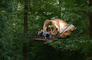 Tree Tent Han