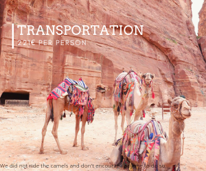 Transportation Jordan